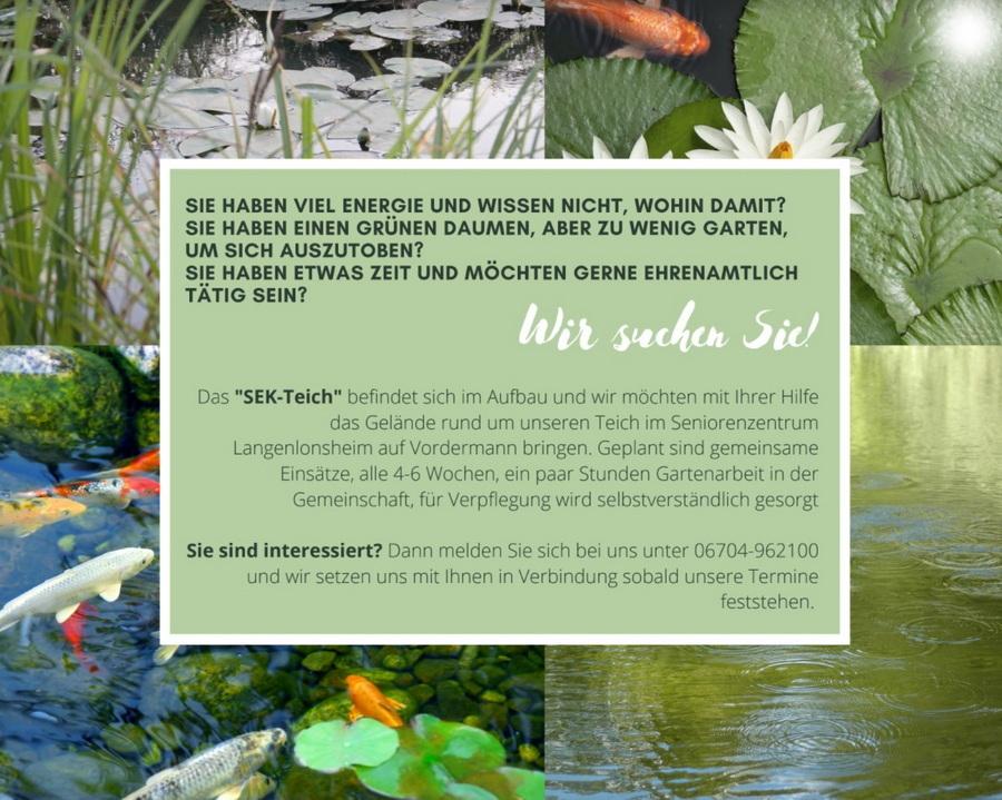 Aufruf an Freiwillige zur Teichpflege
